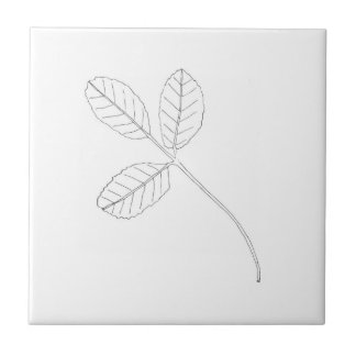 Mint herb small tile