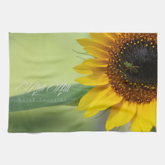 Mint Hill Kitchen Towels