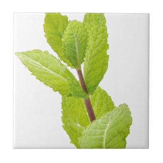 Mint leaves tiles