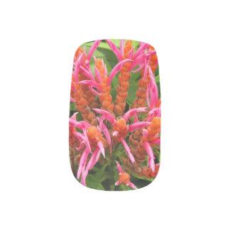 Minx Nails - Coral Aphelandra Minx Nail Art