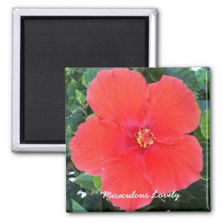 Miraculous Lovely - Red Flower Magnet