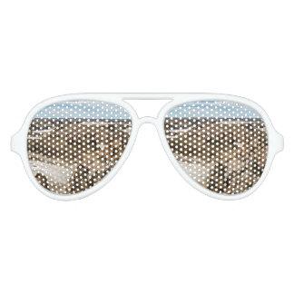 Miradores de Darwin, Santa Cruz Argentina Aviator Sunglasses