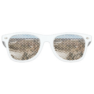 Miradores de Darwin, Santa Cruz Argentina Retro Sunglasses