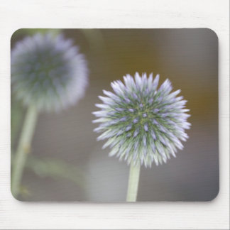 Mirrored Thistles Mousepad
