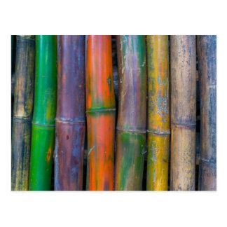 Miscellaneous - Chromatic Bamboos Pattern Postcard