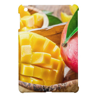 Miscellaneous - Mango & Wood Furnace iPad Mini Cases
