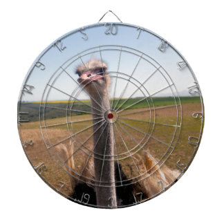 Miscellaneous - Ostriches Patterns Ten Dartboards