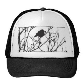 Mischief & Mayhem Trucker Hat