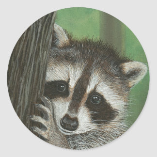 Mischief Raccoon up a Tree sticker