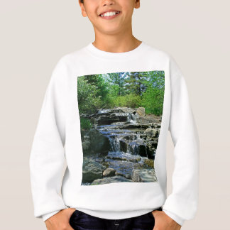 Mischievous Memories Sweatshirt