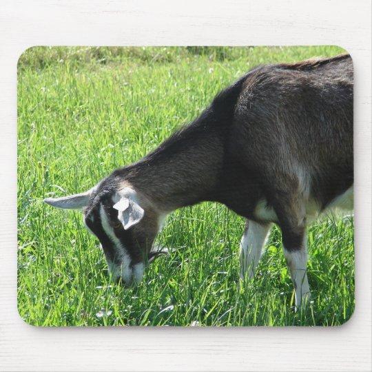 Misha the Goat Mouse Pad