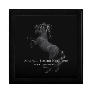 Miss America Rodeo Stallion Awards Jewelry Box