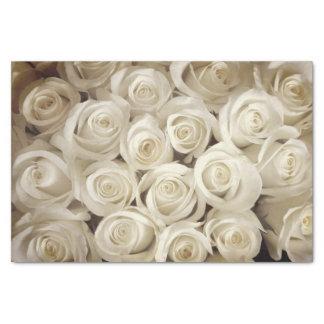 Miss America White Roses Tissue Paper