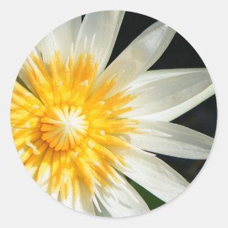 Miss Sunshine Classic Round Sticker