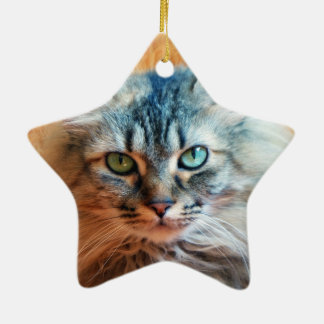 Miss Tootles Ceramic Star Ornament