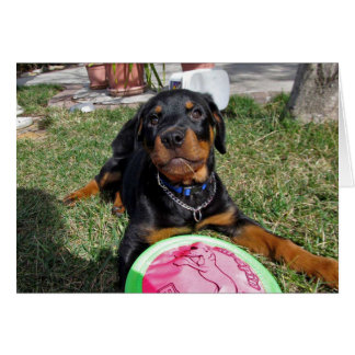 Miss You Rottweiler Puppy Card