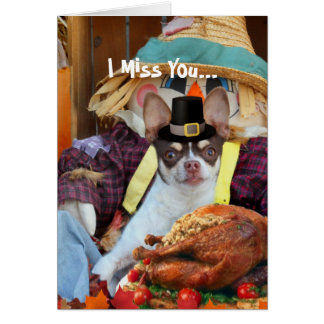 Miss You Thanksgiving Chihuahua dog Greeting Card