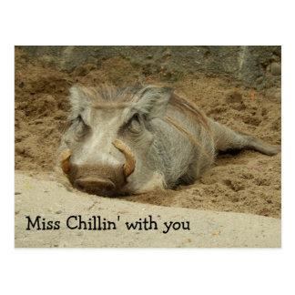 Miss You Wathog Postcard