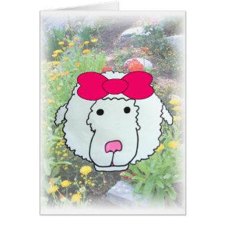 Missing Ewe Card