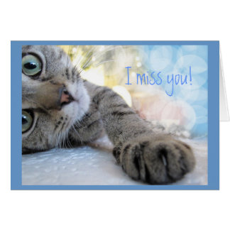 Missing You, Cute Floor Cat Animal Humor Card