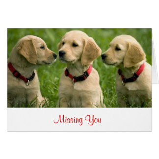 Missing You Golden Retriever Puppies  Note Card