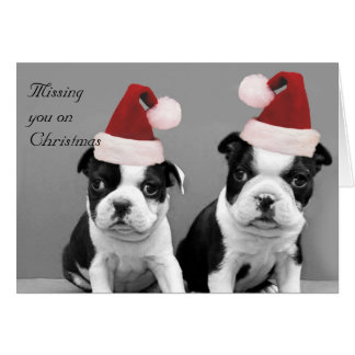Missing you on Christmas Boston terriers card