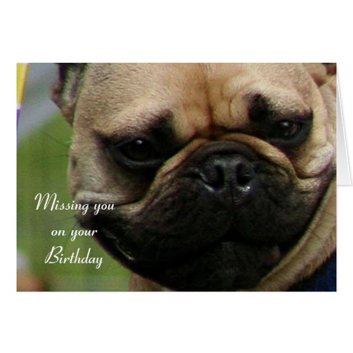 Missing you on your Birthday French Bulldog card | Zazzle