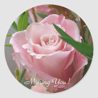 Missing You Pink Rose - Classic Round Sticker