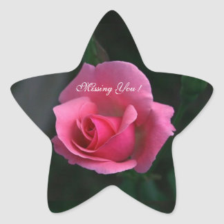 Missing You ! Pink Rose - Star Sticker