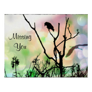 Missing You, The Lonely Crow Postcard