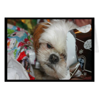 """""""Missing You This Christmas"""" Card With Shih tzu"""