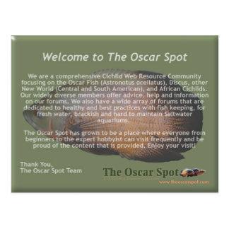Mission Statement Postcard