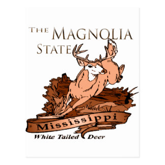 Mississippi Magnolia State White Tailed Deer Postcard
