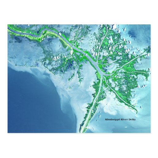 Mississippi River Delta Satellite Postcard