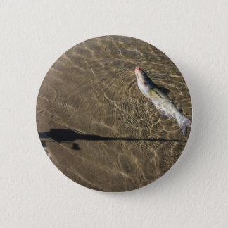 Missouri Catfish 2 Inch Round Button