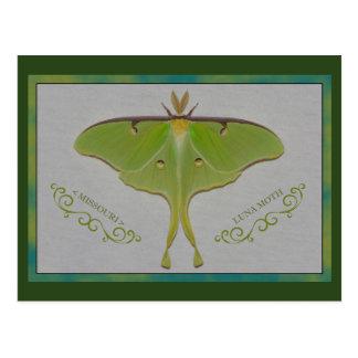 Missouri Luna Moth. Postcard