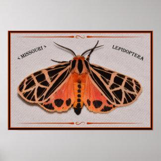 Missouri Tiger Moth. Poster