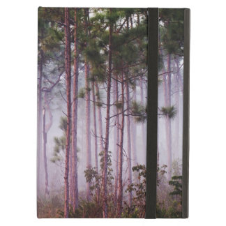 Mist among pine trees at sunrise, Everglades iPad Air Covers
