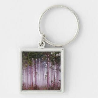 Mist among pine trees at sunrise, Everglades Keychains