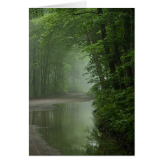 Mist in the forest card