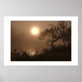Mist Rise Poster