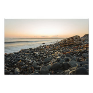 Mistaken Point, Newfoundland Photo Print