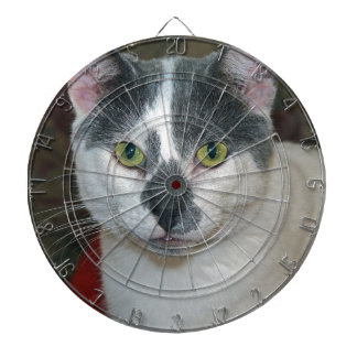 Mister Pants Dartboard