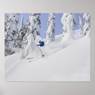 Mistie Fortin skis powder Poster