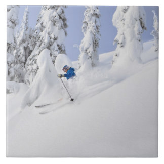 Mistie Fortin skis powder Tiles