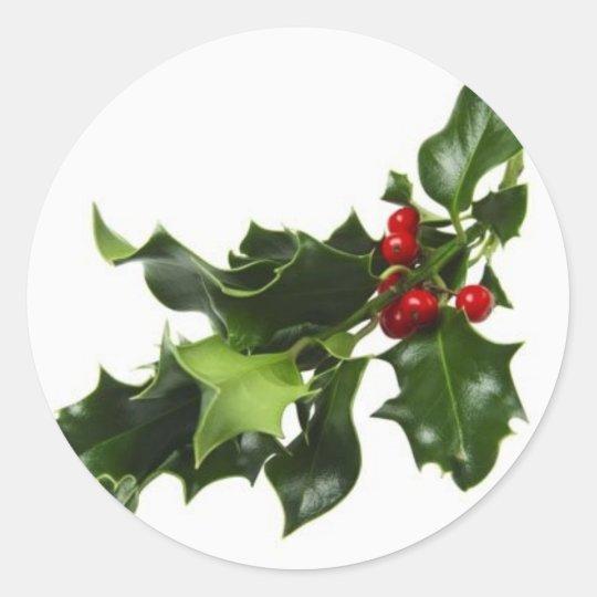 Mistletoe Classic Round Sticker