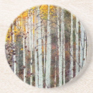 Misty Birch Forest Coaster