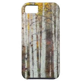 Misty Birch Forest iPhone 5 Case