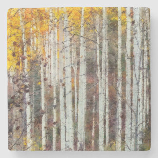 Misty Birch Forest Stone Coaster