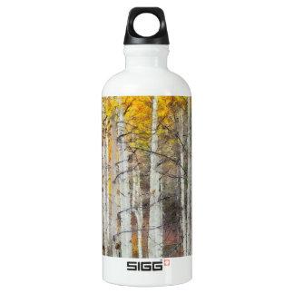 Misty Birch Forest Water Bottle